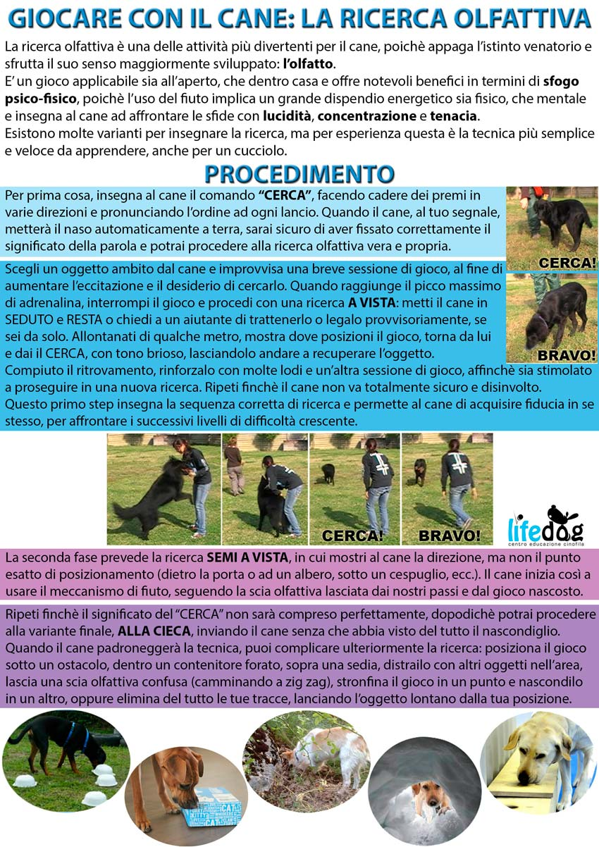 ricerca-cane